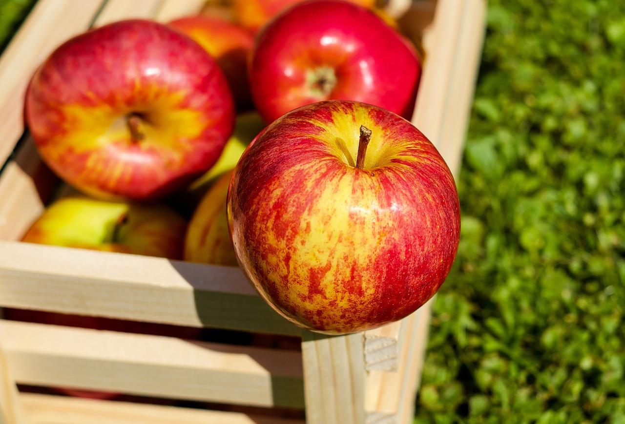 Pomme : serait-elle dangereuse pour la santé ?